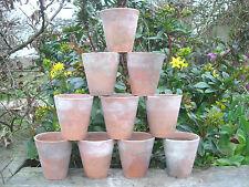 """10 Vecchi Vintage Vasi di Terracotta per piante diametro 3.25"""" Auricula Pentole 12"""