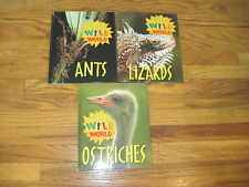 3 WILD WILD WORLD BOOKS Ants & Ostriches by Liza Jacobs, Lizards by Tanya Stone