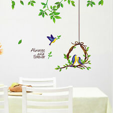 Cortina New Wall Sticker Wall Decal - (50X70) CM - Large