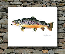 BROWN TROUT Painting Fly Fishing 11 x 14 ART Print Signed by Artist DJR