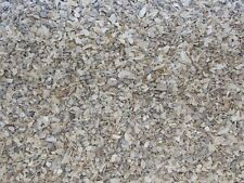 OYSTER SHELL FOR BIRDS - fish 1 Lb GRAMS / DIGESTIVE SYSTEM OF BIRDS