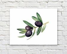 Olive Branch Watercolor Painting Art Print by Artist DJ Rogers