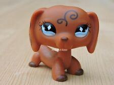 Littlest Pet Shop LPS #640 Figure Brown Swirls Tattoo Dachshund Dog Diamond Eyes