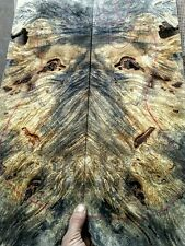 "Buckeye burl guitar bass 17x23x1/4"" figured wood, drop top laminate luthier 4"