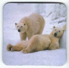 Frigorifero magnete -: due faulenzende ORSI POLARI-two Lazy Polar Bears