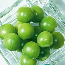 Green Agate Tomato Seeds 20 Seeds Lycopersicon Esculentum Fruit Vegetable B041