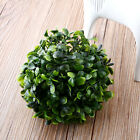Marimo Moss Balls Live Aquarium Plant Fish Tank Decoration Ornament Cladophora