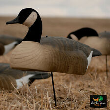 AVERY GREENHEAD GEAR GHG HOT BUY CANADA GOOSE SHELL DECOYS DOZEN 12