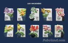 Feves LES ORCHIDEES  DV1888  FB