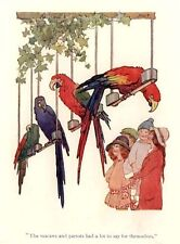 Margaret Tarrant, ready mounted antique print 1919, Parrot, Macaws STUNNING