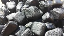 BLACK TOURMALINE TUMBLED STONE (1) MEDIUM/LARGE NATURAL TUMBLE STONE