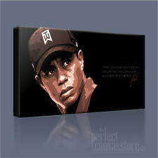 TIGER WOODS GOLF LEGEND ON COURSE CANVAS ICONIC POPART PRINT PICTURE ArtWilliams