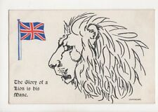 The Glory Of A Lion Is His Mane Vintage WW1 Postcard 172b