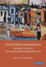 Social Rights Jurisprudence : Emerging Trends in International and...