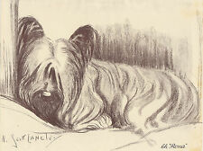 GORGEOUS SKYE TERRIER DOG VINTAGE DOG PRINT 1935 by NINA SCOTT LANGLEY