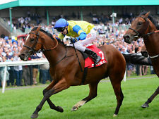 Horse Racing The Top Rate Betting System