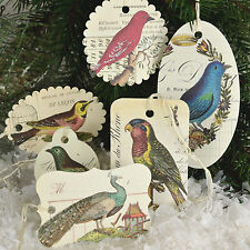 Set of 36  Bird Image Paper Christmas Ornaments Gift Tags Cavallini NEW