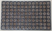 Jiffy 7 Pellet Tray 104 Cell 30mm Jiffy with Tray Ready for Cloning Seeds
