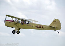 "Model Airplane Plans (FF): Auster Scale 21"" Rubber-Powered (FROG - 1961)"