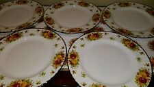 ROYAL ALBERT OLD COUNTRY ROSES    HOLIDAY  DINNER PLATES EIGHT