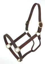 Royal King brown leather track halter weanling size horse tack equine 44-2045