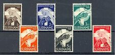 SURINAME # 151/56    KW € 20   GEST  LUXE   @4
