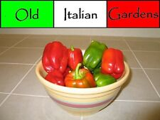 40 Calwonder Bell Pepper Seeds Very Productive Easy to Grow Non GMO Heirloom