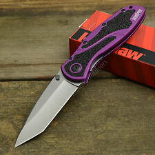 Kershaw Blur Stonewashed CTS-BDZ1 Assisted Open Purple Handle Knife 1670PURBDZ