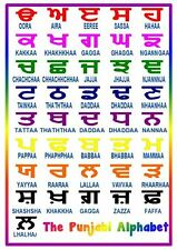 The Punjabi Alphabet -A4 Laminated Poster - Letters- Learn a language
