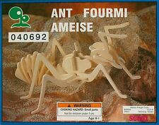 IQ Assy. Products Ant Insect Balsa Wood Model School Project 3D Puzzle Kit SC001