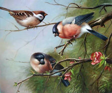 Wonderful art Oil painting nice birds on the branch of plum flowers in spring