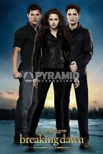Breaking Dawn Part 2 Trio POSTER 60x90cm NEW * Twilight Edward Bella Jacob