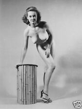 1960s Pin-up Judy O'Day studio pose 8 x 10 Photograph