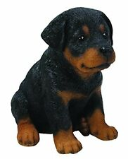 Sitting ROTTWEILER Puppy Dog - Life Like Figurine Statue Home / Garden NEW