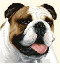 BULLDOG dog - complete counted cross stitch kit *All materials supplied