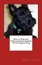 How to Train and Understand your Scottish Terrier Puppy & Dog