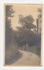 Brione Vintage RP Postcard Switzerland 389a