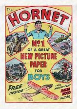 THE HORNET #1-648 ON DVD. FULL RUN. 1963-1976. BOYS BRITISH ADVENTURE COMIC. UK
