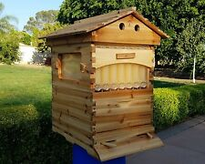 Free Ship Auto Flow Frame Beehive 10-Frame Langstroth 1-Deep Brood 1-Deep