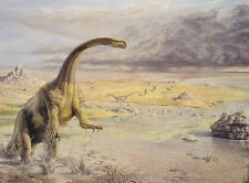 POSTCARD SOUTH WALES LATE TRIASSIC PROSAUROPOD DINOSAUR ISLE, ISLE OF WIGHT