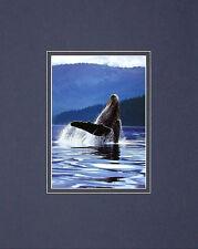 Art Wolfe Humpback Whale Poster Kunstdruck Bild 50x40cm - Kostenloser Versand