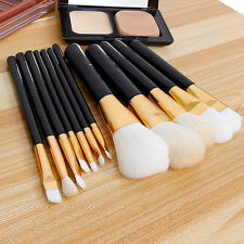 Pro Cosmetic 12pcs Makeup Brushes Set Powder Foundation Eyeshadow Lip Brush Tool