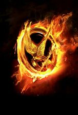 A1 HUNGER GAMES CATCHING FIRE NEW MOVIE PICTURE ART PRINT PREMIUM POSTER