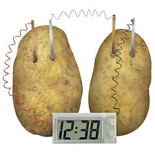 Build Your Own Potato Battery Clock Science Set Padg Kids Experiment Equipments