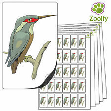 480 Kingfisher Stickers. High Quality Self Adhesive Animal Labels By Zooify.