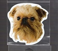 Brussels Griffon 4 inch face magnet for anything metal