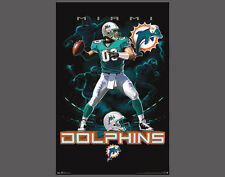 Rare Miami Dolphins ON FIRE Quarterback Action NFL Team Theme Art POSTER