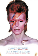 "David Bowie Aladdin Sane Album Cover Art Poster 24"" x 36"""