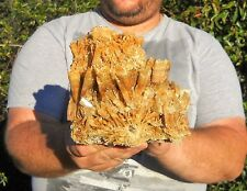XL Selenite Australia / Crystal Cluster Display Specimen