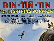 THE LIGHTNING WARRIOR, 12 CHAPTER SERIAL, 1931 - RIN TIN TIN